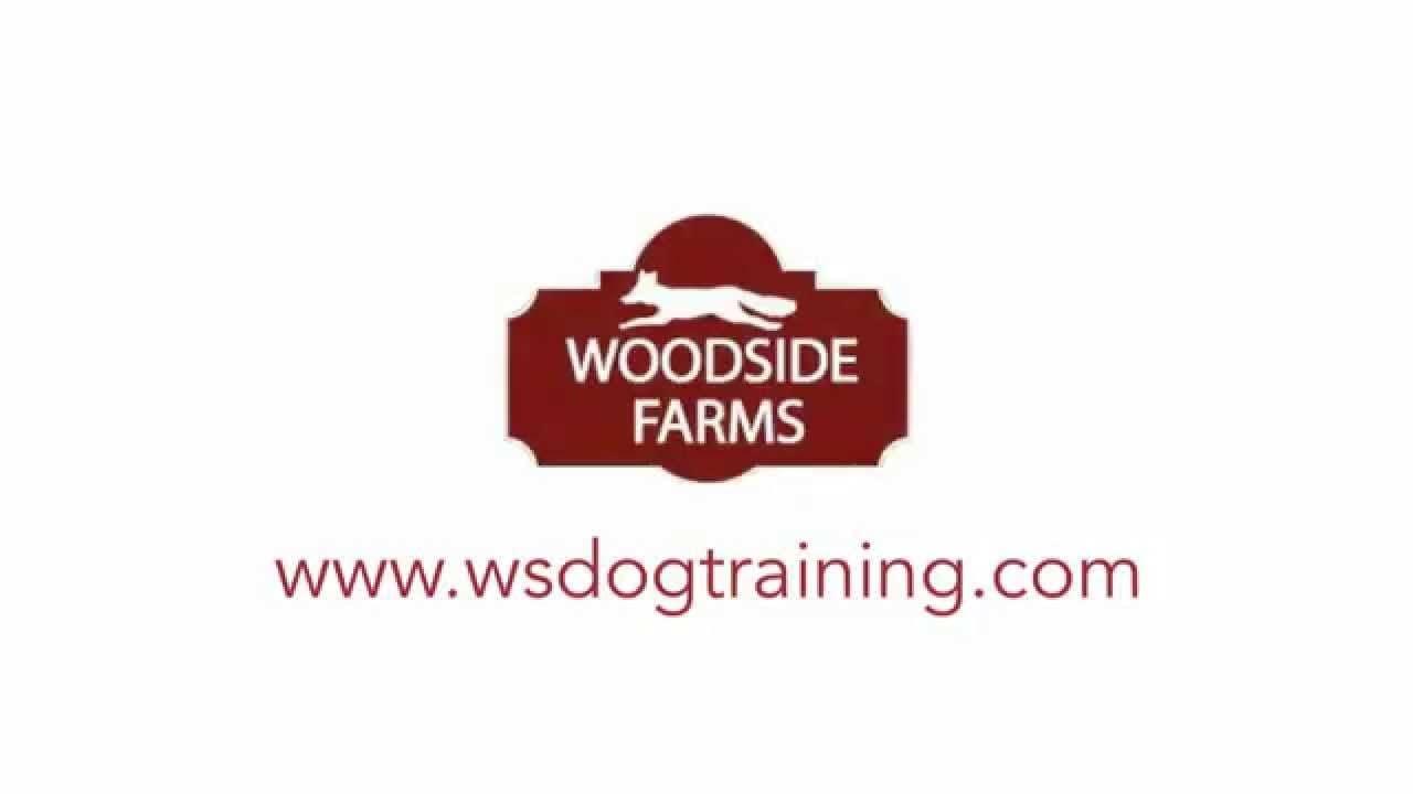 Woodside Farms Dog Training