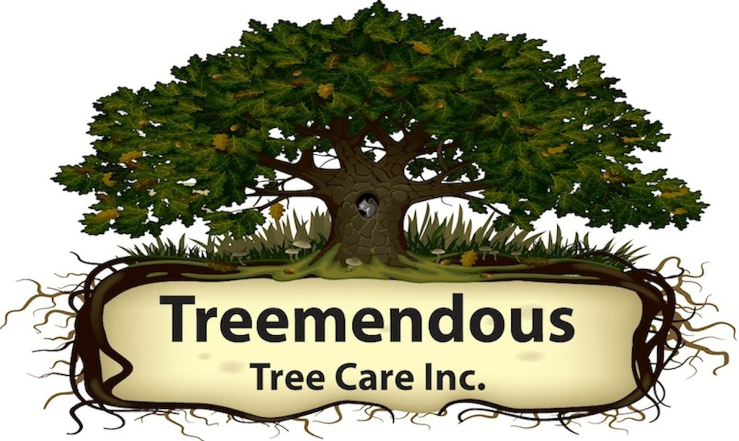 Treemendous Tree Care Inc