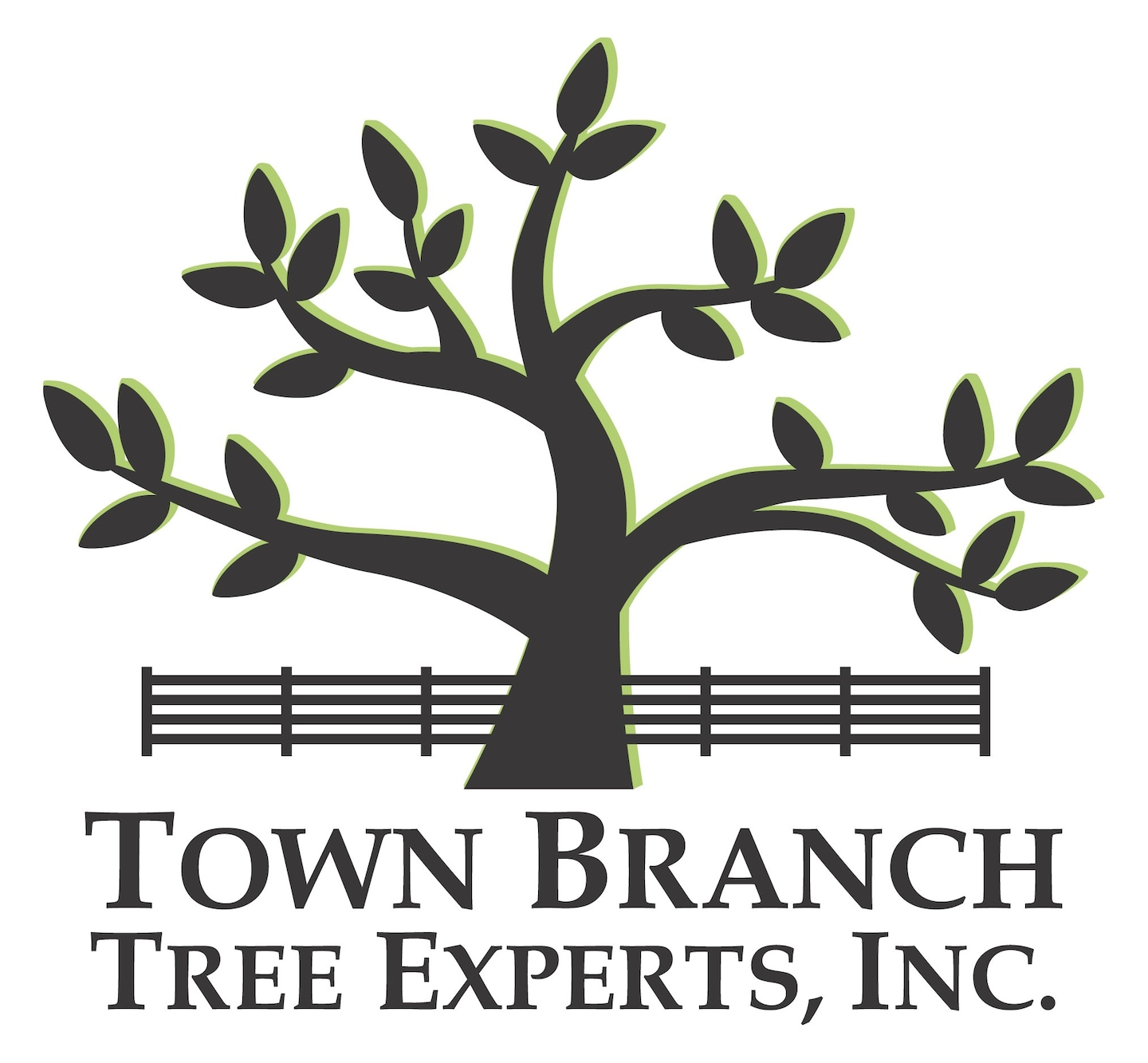 Town Branch Tree Experts Inc