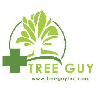 Tree Guy Inc