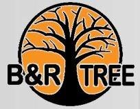 B&R Tree Care LLC