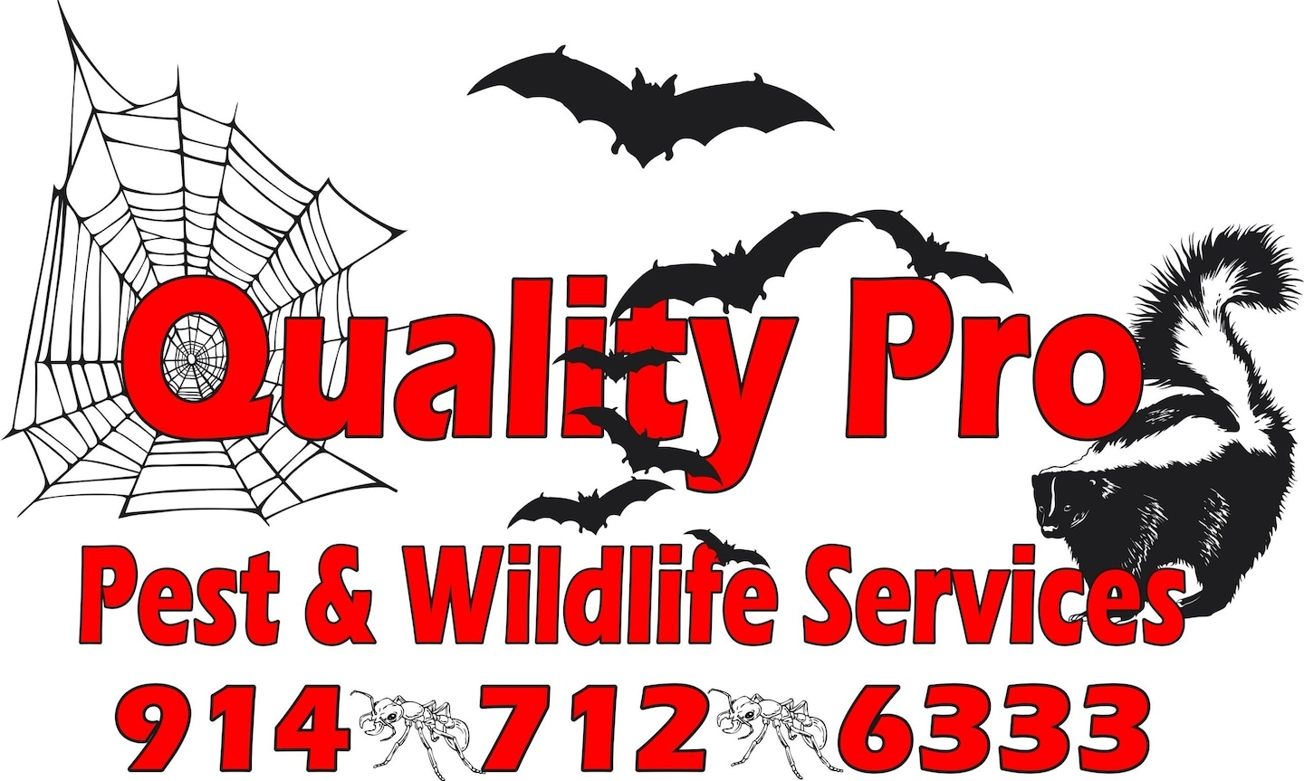QualityPro Pest and Wildlife Services