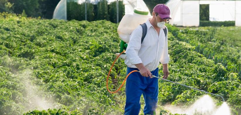 Bug Master Pest Control Reviews Missoula Mt Angie S List