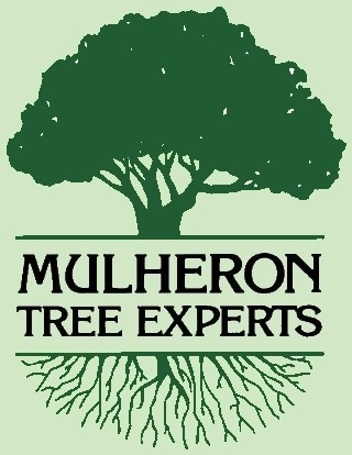 Mulheron Tree Experts logo