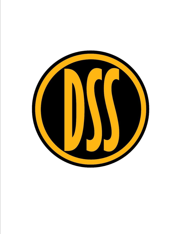 DSS Construction & Development LLC