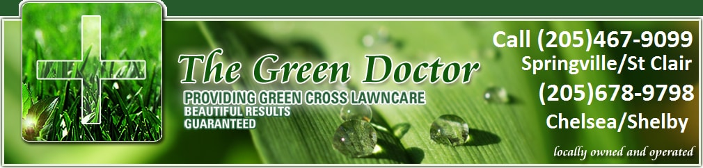 The Green Doctor