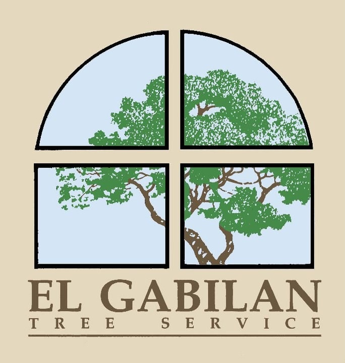 El Gabilan Tree SVC