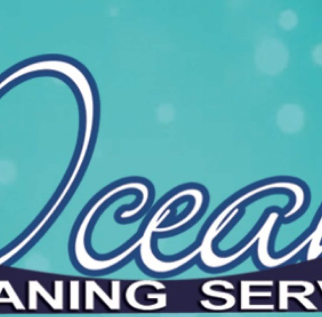 The Ocean Cleaning Services