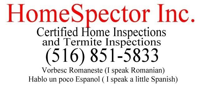 HomeSpector Inc