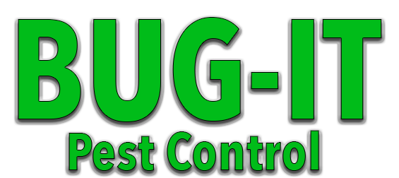 Bug It Pest Control