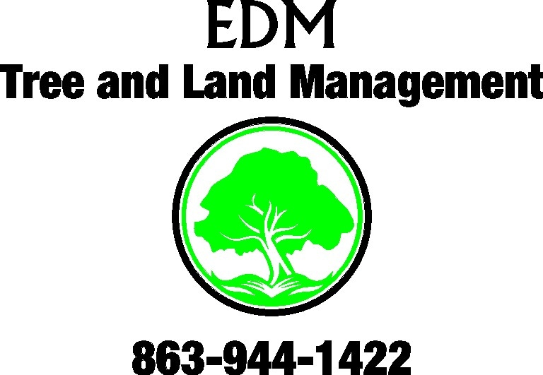 Emergency and Debris Management, LLC