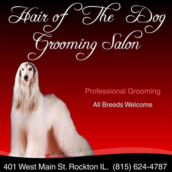 Hair Of The Dog Grooming Inc.