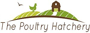 The Poultry Hatchery