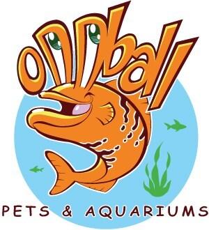 Oddball Pets and Aquariums