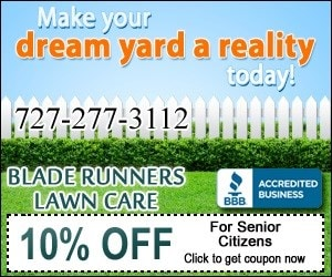 Blade Runners Lawn Care