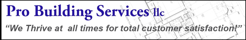 PRO Building Services, LLC