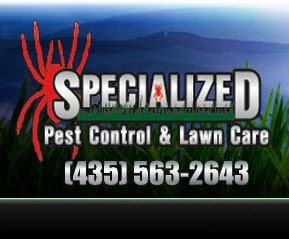 Specialized Pest Control and Lawn Care