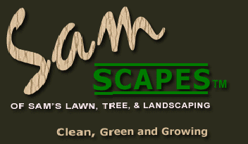 Sam's Lawn & Tree Landscaping
