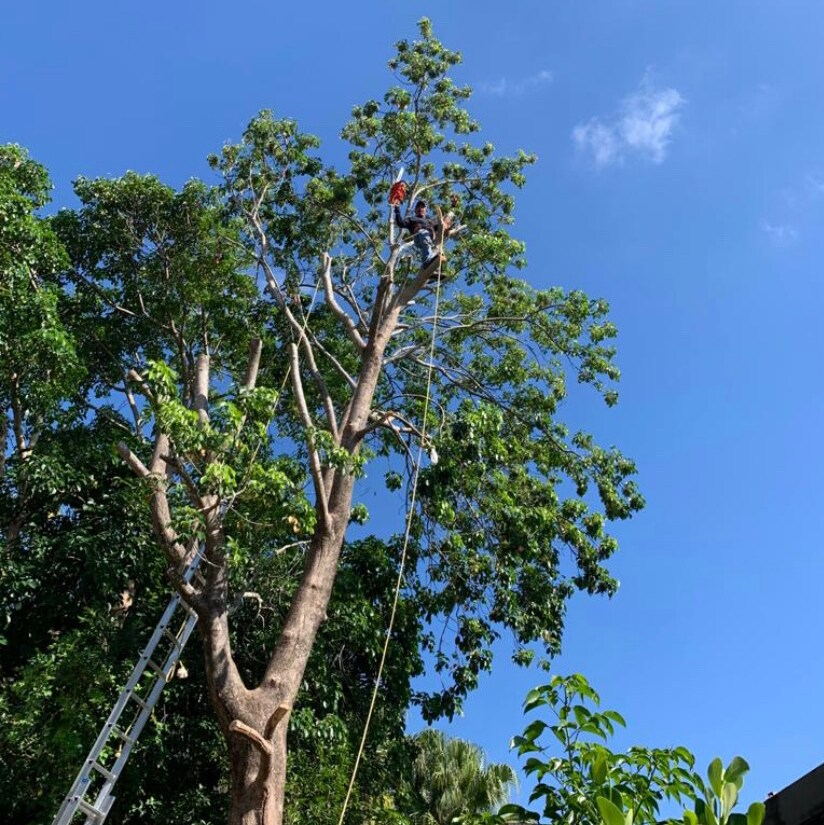 3H Landscaping Llc