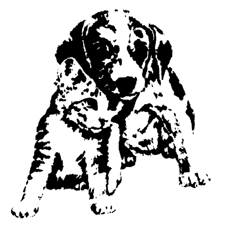 Arizona Avenue Animal Clinic