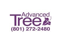 Advanced Tree and Stump Services