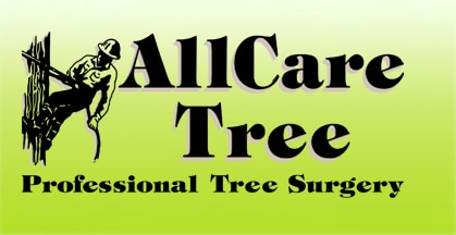 All Care Tree Surgery