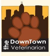 The Downtown Veterinarian