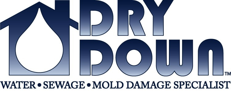 Dry Down Inc