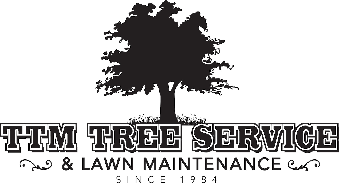 TTM Tree Service & Lawn Maintenance