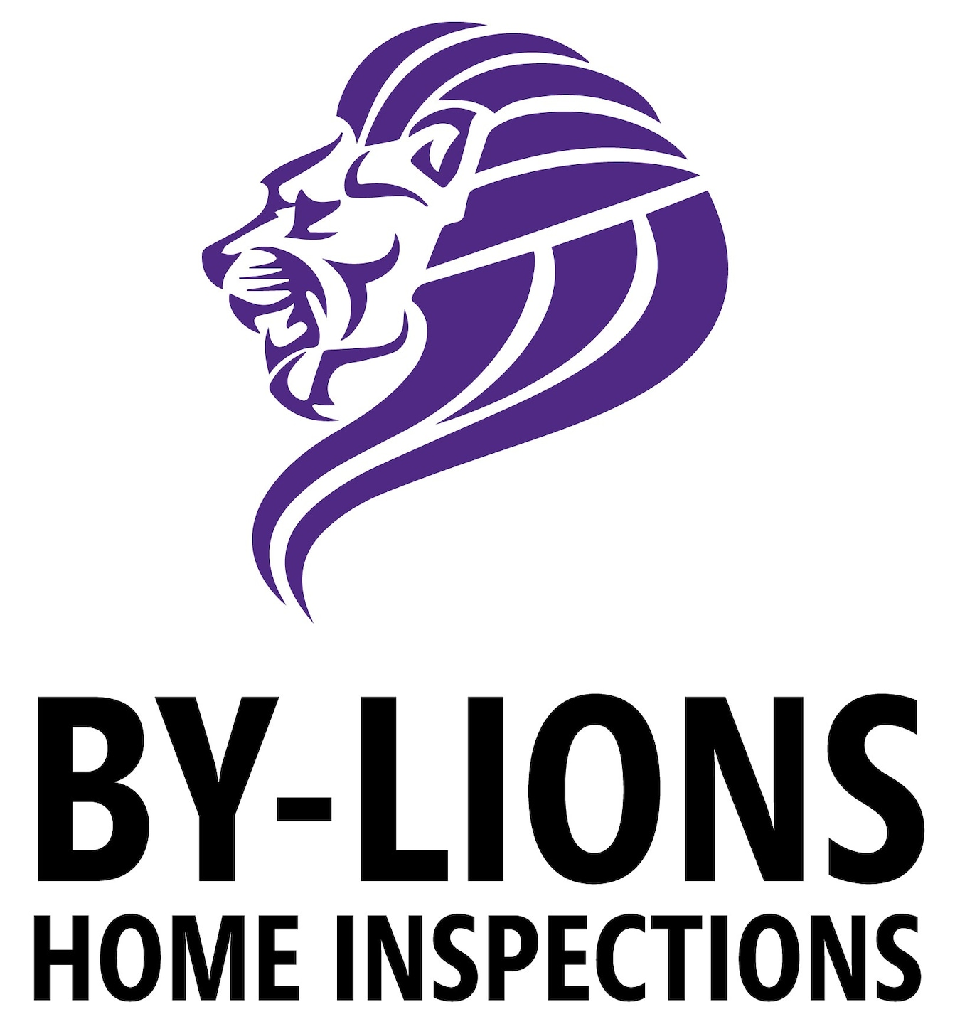 By-Lions Home Inspections LLC