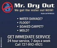Mr. Dry Out Inc.