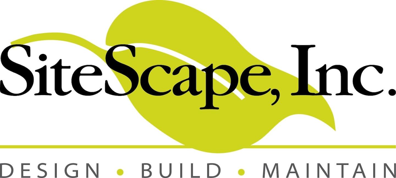 SiteScape Inc