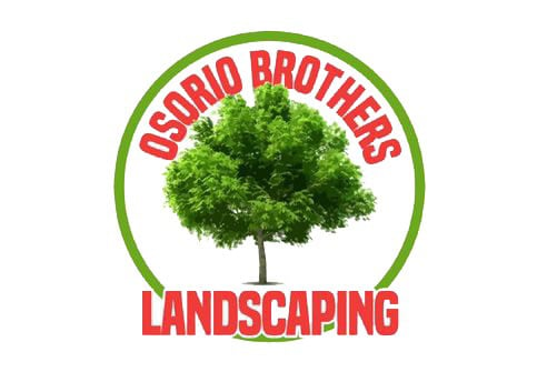 Osorio Brothers Landscape