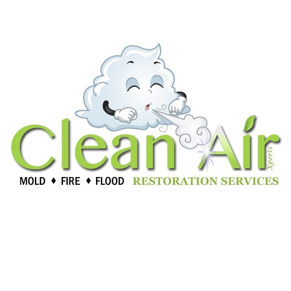 Clean Air Xperts Inc