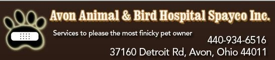 Avon Animal & Bird Hospital Spayco Inc