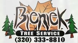 Bieniek Tree Service LLC