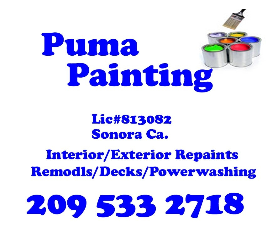 Puma Painting