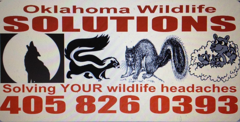 Oklahoma Wildlife Solutions LLC
