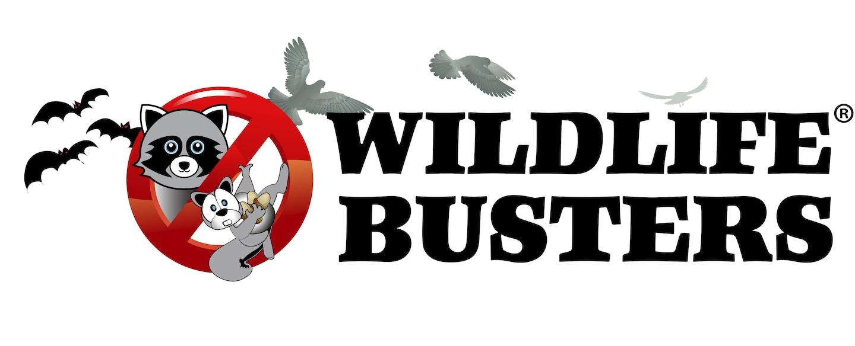 Wildlife Busters