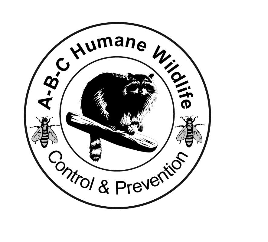 ABC Humane Wildlife Control & Landmark Pest Mgt logo