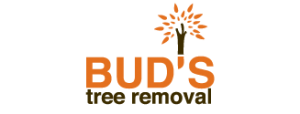 Buds Tree Removal