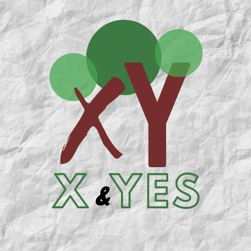 X & Y Environmental Solution LLC