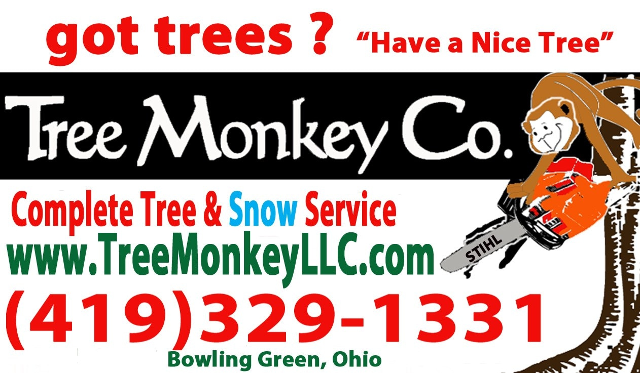 Tree Monkey LLC