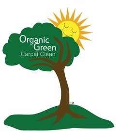 Organic Green Carpet Clean