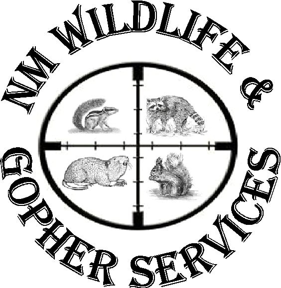 New Mexico Wildlife and Gopher Services