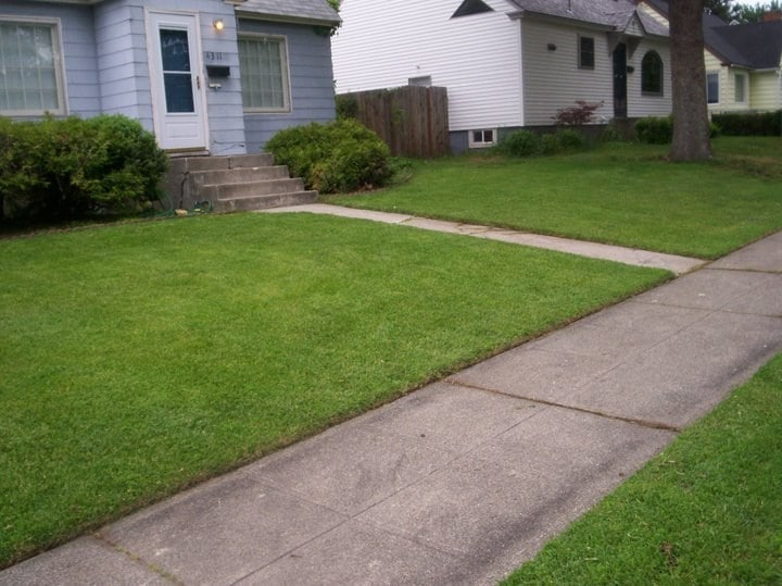 Affordable Option Lawn Care