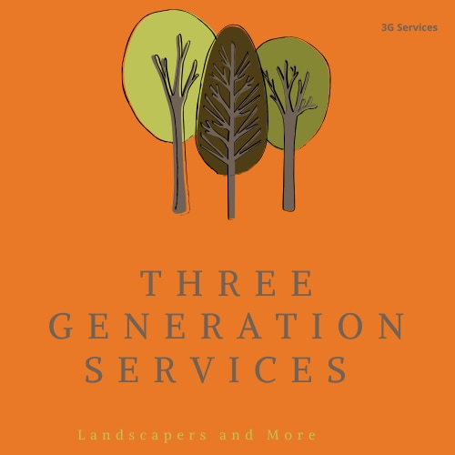 Three Generation Services
