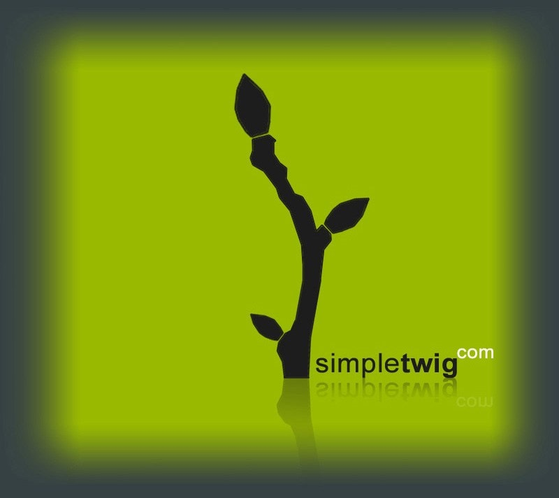 SimpleTwig Architecture.LLC