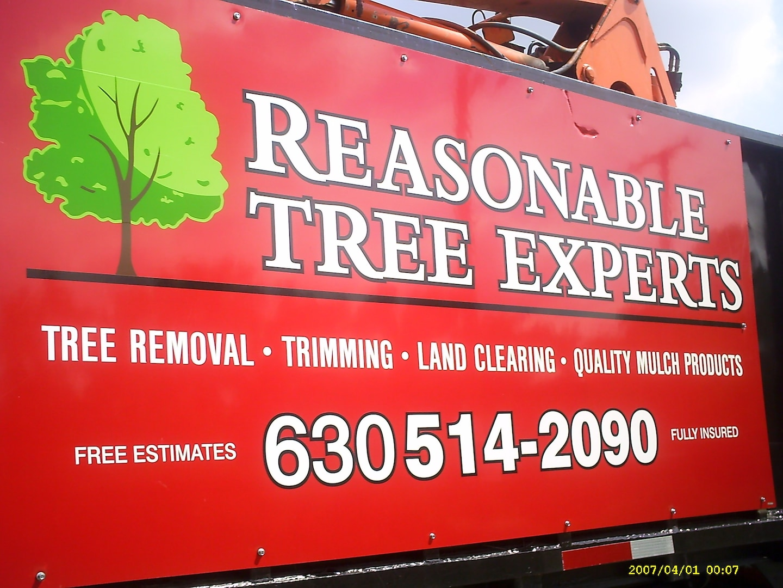 Reasonable Tree Experts