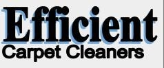 Efficient Carpet Cleaners Inc